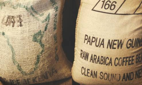 What is Arabica? image