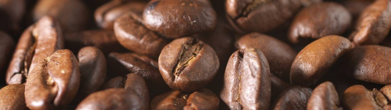 Grumpy Mule Coffee title image